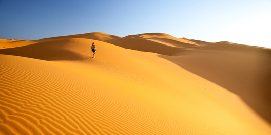 desert survival Sahara desert survival guide by: brian ward you and 4 other friends are stuck in the sahara desert this guide will give you tips on how to last just long enough for a rescue or even to find civilazation.